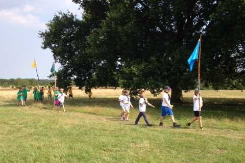 Summer 2016: 28th Cambridge Cubs and Scouts